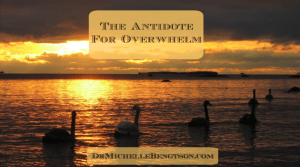 The Antidote for Overwhelm by Dr. Michelle Bengtson