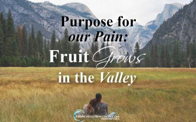 Purpose For Our Pain: Fruit Grows in the Valley