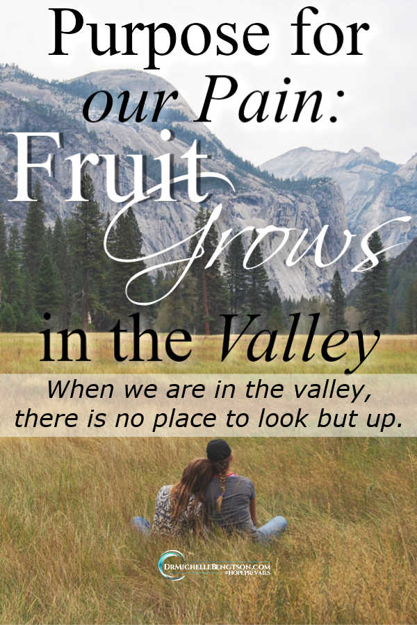 If you're going through a difficult time, rest assured God never wastes our pain.  Fruit grows in the valley. #Christian #Christianity #encouragement