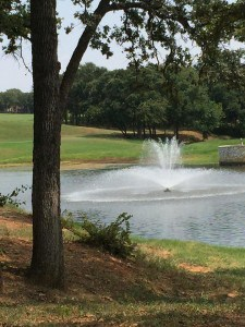 Hogans Glen Fountain