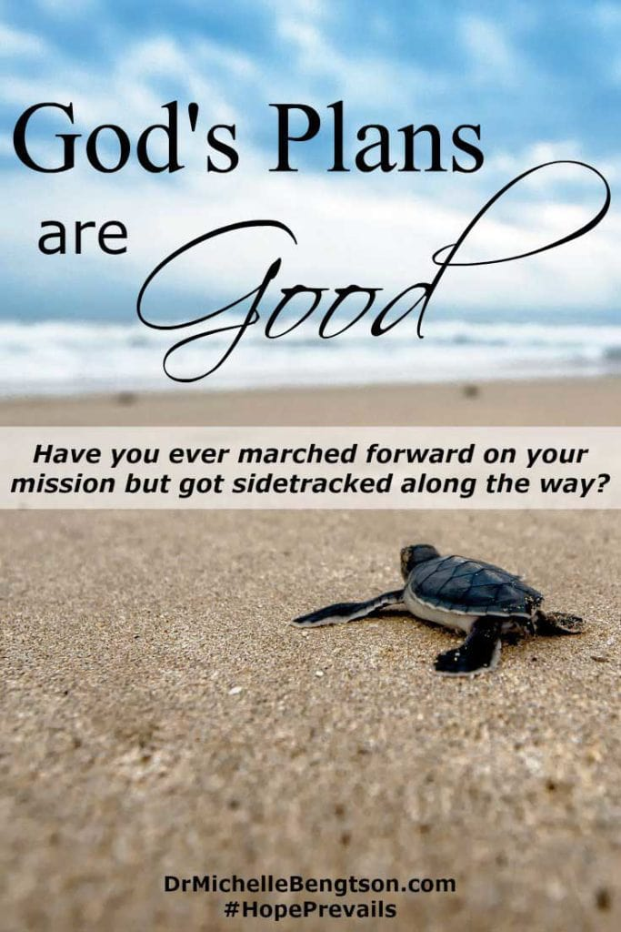 When you veer off course or storms come instead of sunny skies, keep your eyes on Him. God's plans for you are good. Nothing that happens takes God by surprise.