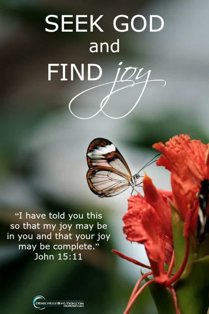 "Are you seeking more joy? Seek God and you'll find more joy. Begin with declaring His truth over your life: ""I have told you this so that my joy may be in you and that your joy may be complete."" John 15:11 #Bibleverse #joy #inspirationalquote"