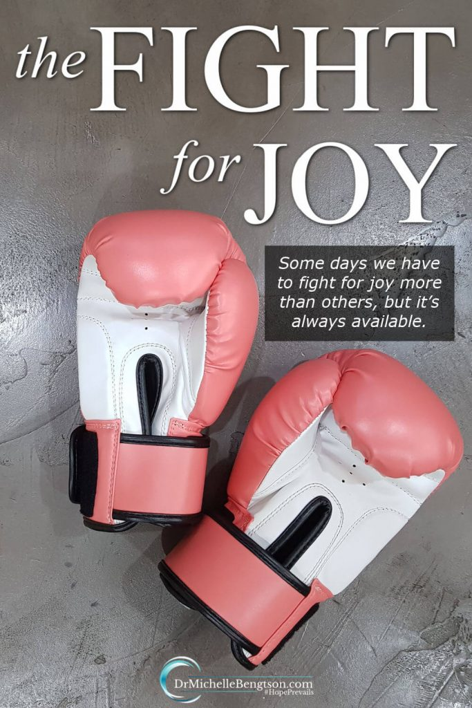 Despite the circumstances we're facing, we must fight for joy. Some days, we fight harder than otheres. These are the promises I stand on in the hard days. #joy #nofear #faith #hope