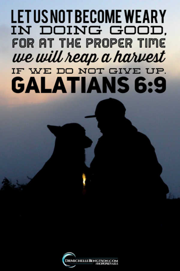 Let us not become weary in doing good. Galatians 6:9 #BibleVerse #scripture #faith
