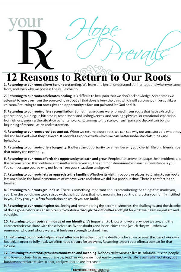 Your roots help you understand where you came from, what is valuable and what path to take in the future. #encouragement #inspiration