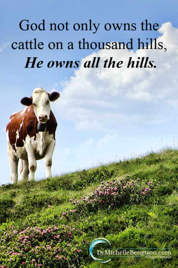 """Why can't we trust God with the little things? """"God not only owns the cattle on a thousand hills, He owns all the hills."""" Psalm 50:10 Read more for encouragement to trust God more. #faith #christianity"""