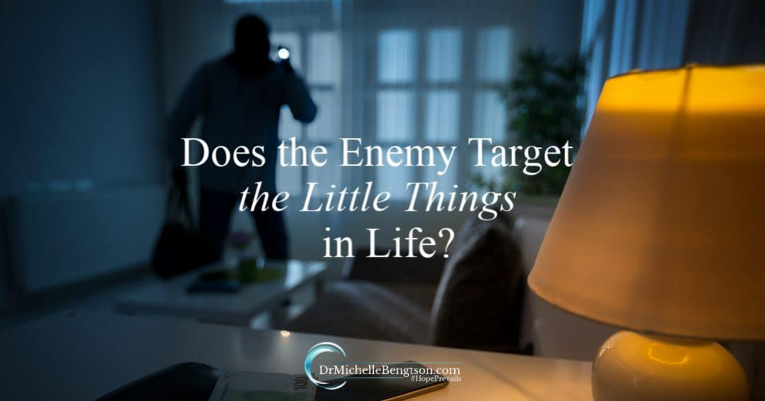 Feature The enemy seeks to steal, kill and destroy. Does the enemy target the little things in life?