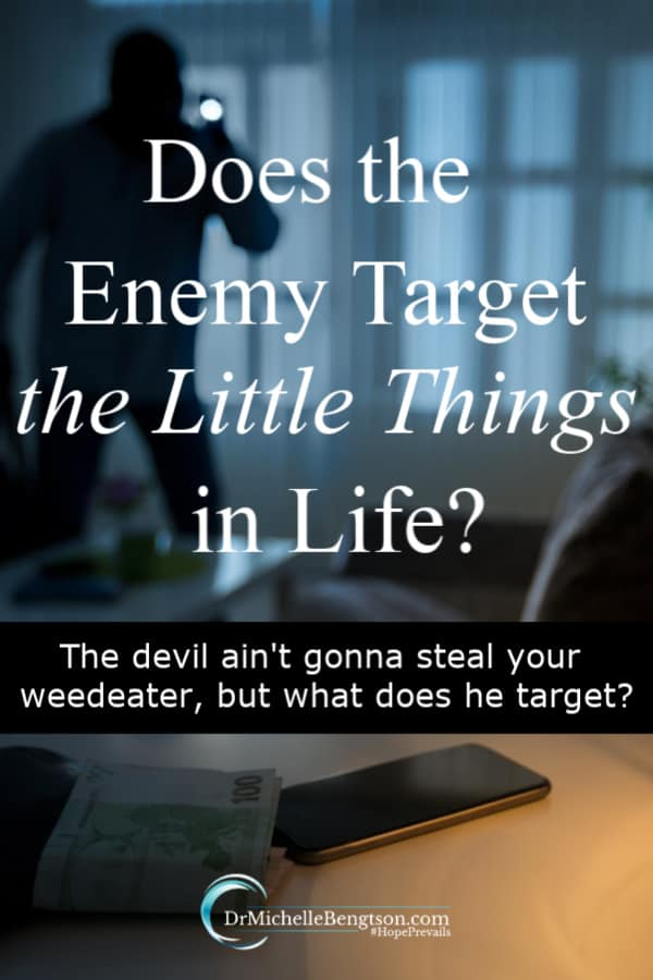 Our enemy is a thief who comes to steal, kill and destroy. Does he target the little things in life? The devil ain't gonna steal your weedeater. What does he target and how do we triumph?
