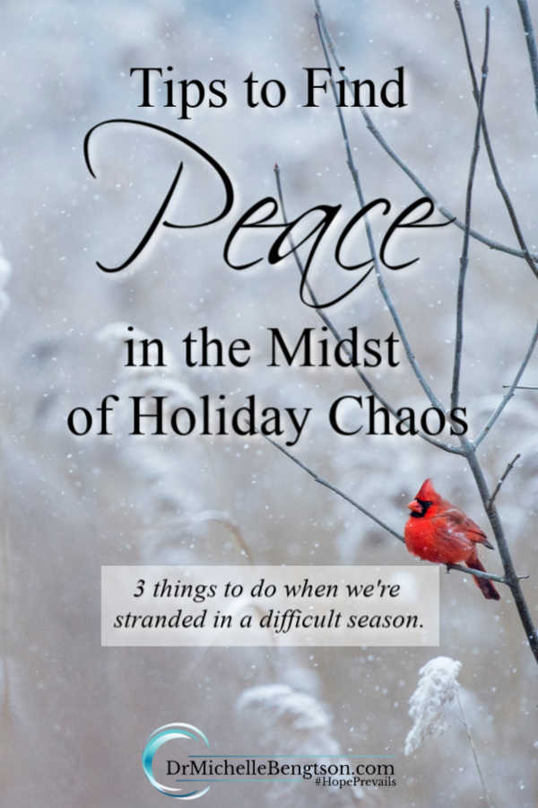 Are you searching for peace in the midst of holiday chaos? Sometimes, God takes us through a process when we're dealing with difficult circumstances. When you feel like you're stranded, these three tips will help you once again fly strong.